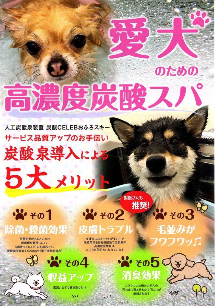愛犬のための高濃度炭酸スパ